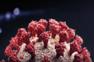 coronavirus,-in-ziua-votului:-peste-1.400-de-cazuri-raportate