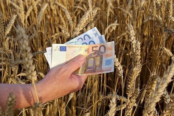 agentia-nationala-de-plati-si-interventie-in-agricultura-a-inceput-sa-plateasca-avansul-pentru-schemele-de-plati-directe