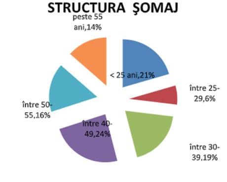 2,51-%-–-rata-somajului-inregistrat-in-evidentele-ajofm-mures-in-luna-septembrie