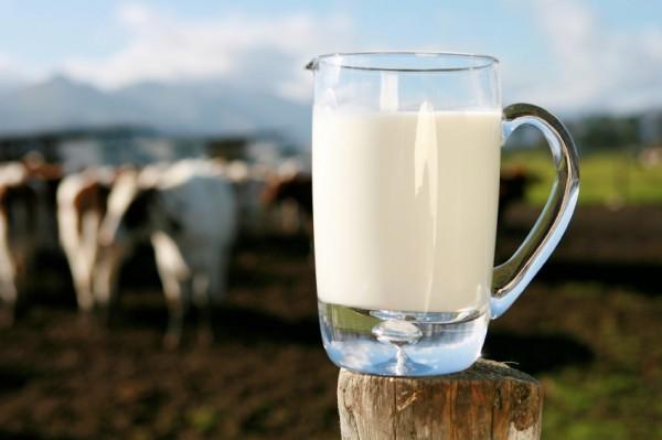 doua-cereri-in-mures-pentru-subventii-la-lapte