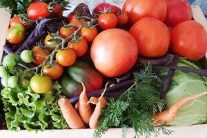 producatori-de-legume,-fructe-si-produse-traditionale-vor-inregistra-anul-acesta-vanzari-in-crestere
