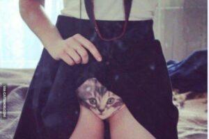 """sabin-pascan,-inspectorul-scolar-pasionat-de-""""pisicute"""""""