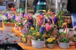 mures:-vanzarile-de-flori-au-scazut-la-jumatate,-fata-de-anul-trecut