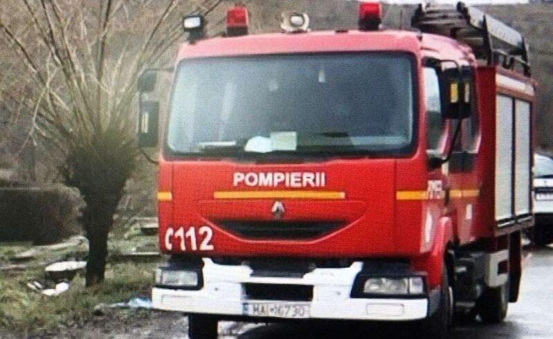 pompierii-mureseni-au-intervenit-pentru-salvarea-unei-bovine-impotmolite-in-namol