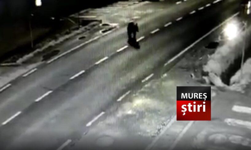 atentie!-imagini-video-cu-un-urs-surprins-pe-strazile-dintr-o-localitate-din-mures!