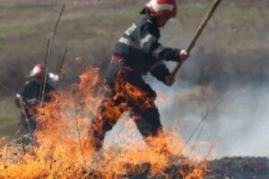 incendiu-de-vegetatie-uscata