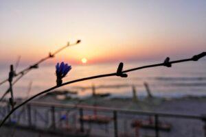30.000-de-turisti-sunt-asteptati-pe-litoral-in-minivacanta-de-paste-si-1-mai