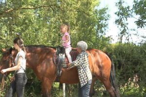 terapia-cu-ajutorul-cailor-la-reghin