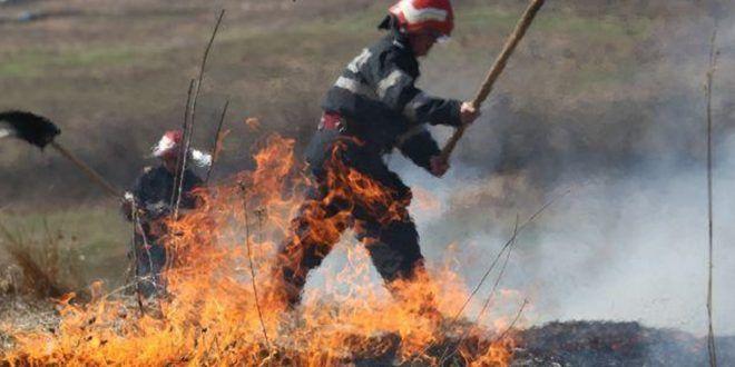 incendiu-de-vegetatie-in-zona-autostrazii-a3,-in-mures
