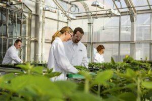 investitie-in-pregatire:-sere-in-gradina-botanica-a-umfst!