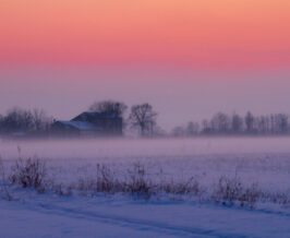 informare-meteo:-vreme-deosebit-de-rece,-ninsori-la-munte-si-vant-puternic-pana-joi
