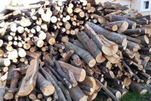 initiativa-legislativa-care-prevede-reducerea-tva-de-la-19%-la-5%-pentru-lemnele-de-foc-a-trecut-de-comisia-de-buget