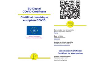 sindicatul-europol:-certificatele-de-vaccinare-nu-pot-fi-verificate-de-politisti