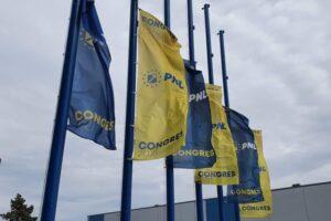 congresul-pnl-este-in-desfasurare-la-romexpo,-in-capitala